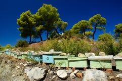 Isola di Poros Fotografia Stock Libera da Diritti