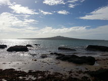 Isola di Rangitoto, Auckland, Nuova Zelanda Fotografia Stock