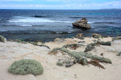 Isola di Rottnest, Australia occidentale fotografie stock libere da diritti