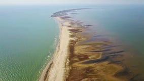 Isola di Sacalin nella regione della zona umida di delta di Danubio stock footage
