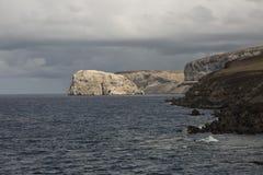 Isola di uccello di Bosun fotografia stock