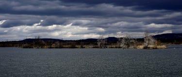 Isola di uccello sul lago Fotografia Stock