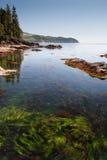 Isola di Vancouver Fotografia Stock Libera da Diritti