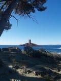 Isola dorata fotografia stock libera da diritti