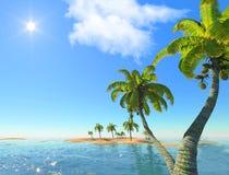 Isola e palme Fotografie Stock Libere da Diritti