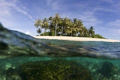 Isola ed oceano tropicali Immagini Stock