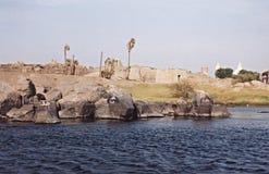 Isola elefantesca Fotografia Stock Libera da Diritti