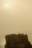 Isola fuori dal litorale della spiaggia California di Pismo in opacità nebbiosa di Immagini Stock