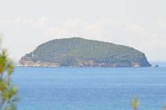 Isola Grecia del serpente Immagine Stock