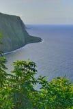 Isola Hawai U.S.A. dell'allerta della valle di Waipio grande Fotografia Stock