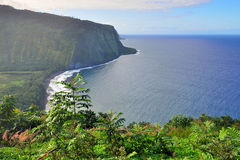 Isola Hawai U.S.A. dell'allerta della valle di Waipio grande Immagini Stock