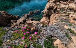 Isola Italia di Costa Paradiso Sardinia fotografia stock