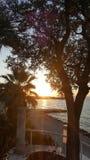 Isola mediterranea contenuta fotographia Corsica Fotografie Stock