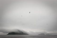 Isola in nebbia fotografia stock