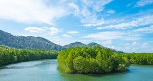 Isola nel fiume Fotografia Stock