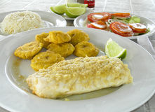 Isola Nicarauga del cereale dei tostones del filetto di pesce Fotografia Stock