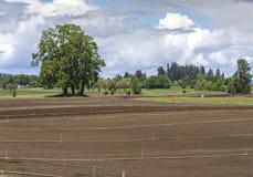 Isola Oregon di Sauvie degli spruzzatori e del terreno coltivabile Immagine Stock
