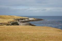 Isola più brulla Immagini Stock
