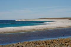 Isola più brulla - Falkland Islands Fotografie Stock Libere da Diritti