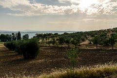 Isola Polvese: Trasimeno jeziora widok Fotografia Stock