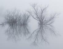 Isola riflettente nebbiosa sul lago di vetro Fotografia Stock