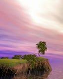 Isola romantica della noce di cocco Fotografia Stock Libera da Diritti