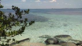 Isola Sri Lanka dei piccioni Fotografia Stock