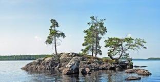 Isola sul lago con i piccoli alberi di pino Immagine Stock