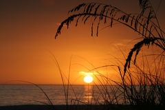 Isola tropicale al tramonto Fotografia Stock Libera da Diritti