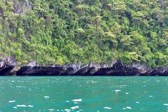 Isola tropicale con la scogliera di sporgenza Fotografia Stock