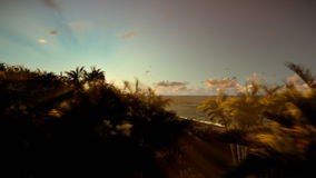 Isola tropicale con le palme contro il bello tramonto royalty illustrazione gratis