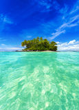 Isola tropicale con le piante verdi ed i cocchi esotici Fotografia Stock