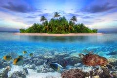 Isola tropicale dei Maldives Fotografia Stock Libera da Diritti