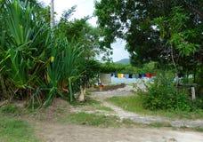 Isola tropicale esotica Immagine Stock