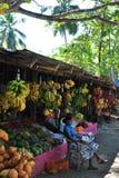 Isola tropicale nell'oceano dello Sri Lanka Immagini Stock Libere da Diritti