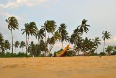Isola tropicale nell'oceano dello Sri Lanka Fotografia Stock Libera da Diritti