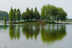 Isola verde Fotografia Stock