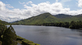 Isola verde Irlanda Fotografia Stock
