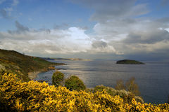 Isola &#x28 di Looe; Della Cornovaglia: Enys Lann-Managh, significante isola del monk' s enclosure) Fotografia Stock Libera da Diritti