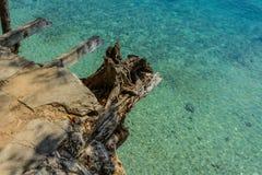 Isola Zanzibar della prigione Fotografia Stock Libera da Diritti