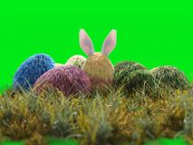 Isolado da cor dos ovos do feriado da Páscoa ilustração do vetor