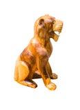 Isolado do cão fotos de stock royalty free