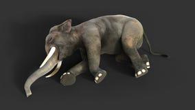 isolado do elefante da ilustração 3d no fundo preto Imagens de Stock Royalty Free