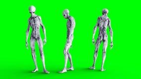 Isolado estrangeiro na tela verde Conceito do UFO Rendição 3d realística Imagens de Stock