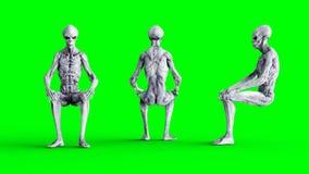Isolado estrangeiro na tela verde Conceito do UFO Rendição 3d realística Fotografia de Stock
