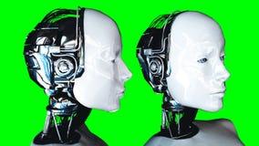 Isolado fêmea do robô do humanoid futurista na tela verde Rendição 3d realística Fotos de Stock Royalty Free