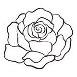 Isolado levantou-se Desenho de esboço Ilustração conservada em estoque do vetor Imagem de Stock Royalty Free