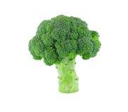Isolado verde dos brócolis no branco foto de stock royalty free