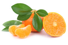 Isolant de mandarines de mandarine de fruits de fruit de mandarines de mandarine Images stock