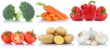 Isolante della raccolta delle patate delle carote del peperone dolce dei pomodori delle verdure Immagine Stock